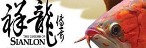 绵阳水族批发市场|绵阳水族馆|绵阳龙鱼