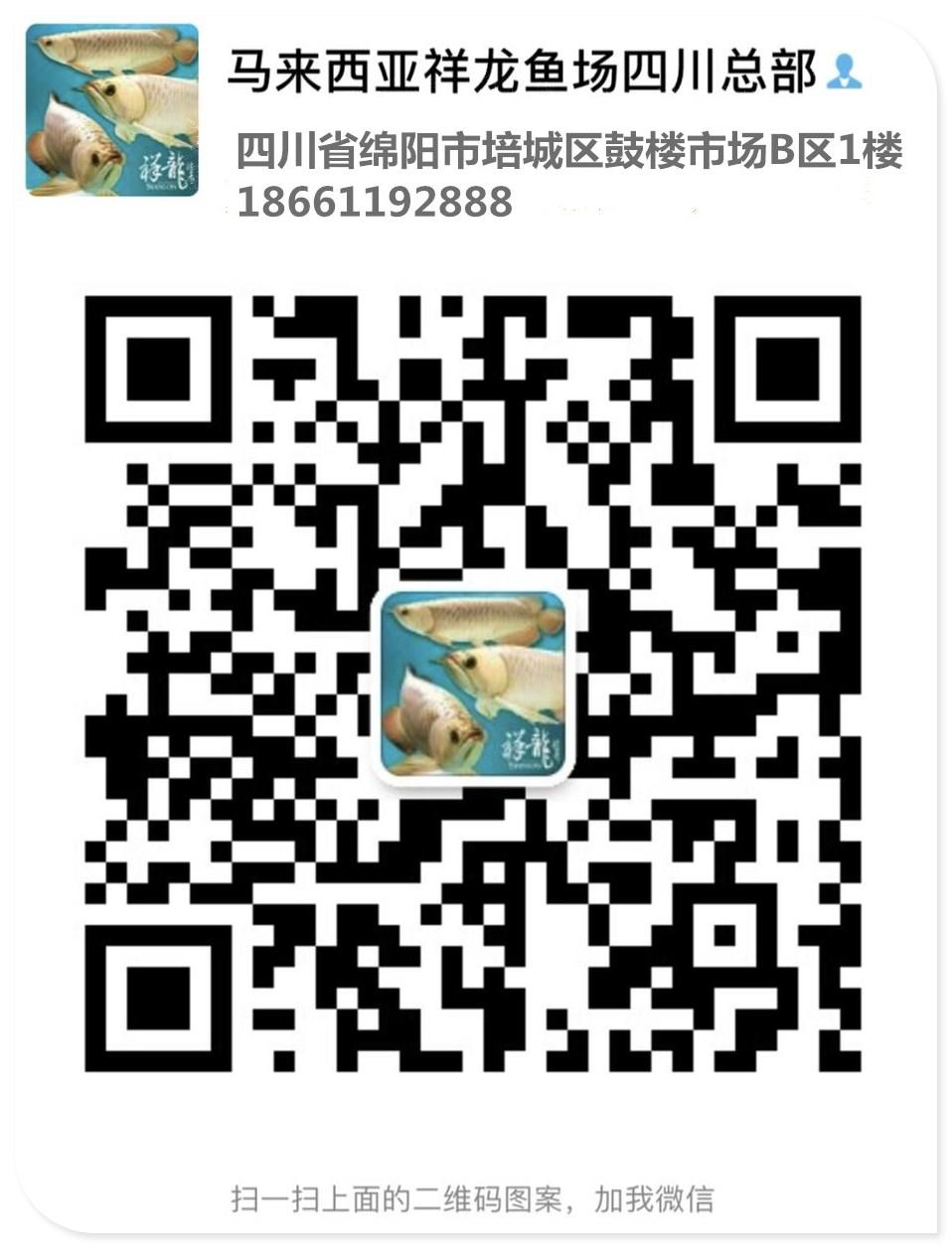 绵阳水族馆微信
