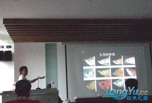 第一届仟湖'龙鱼'研讨会在北京举行 绵阳龙鱼论坛 绵阳水族批发市场第7张
