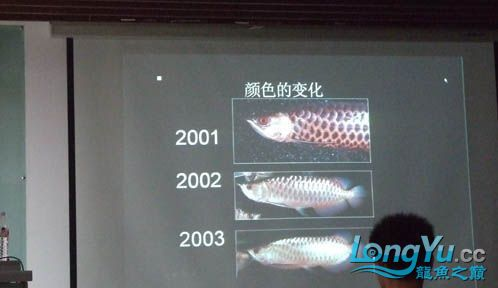 第一届仟湖'龙鱼'研讨会在北京举行 绵阳龙鱼论坛 绵阳水族批发市场第8张