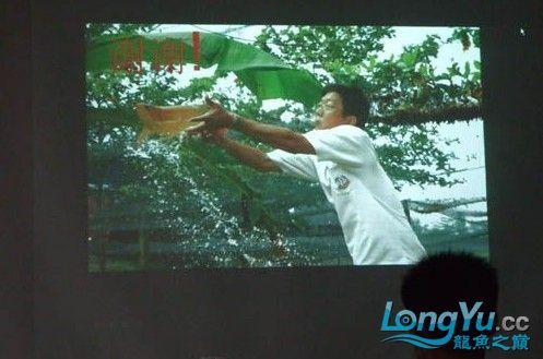 第一届仟湖'龙鱼'研讨会在北京举行 绵阳龙鱼论坛 绵阳水族批发市场第10张