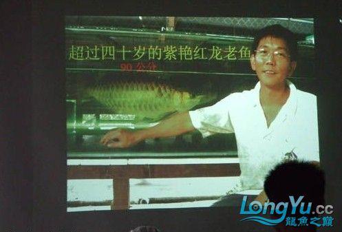 第一届仟湖'龙鱼'研讨会在北京举行 绵阳龙鱼论坛 绵阳水族批发市场第11张