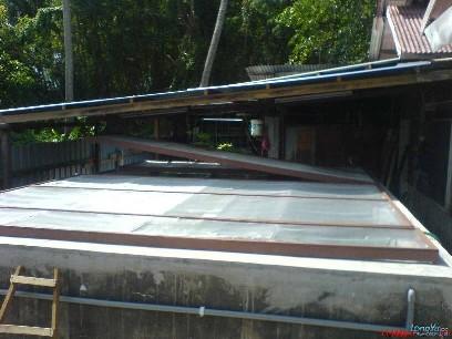 大约经过60天左右完成的,龙鱼家园,21条红尾金龙。我是来自马来西亚,请指教