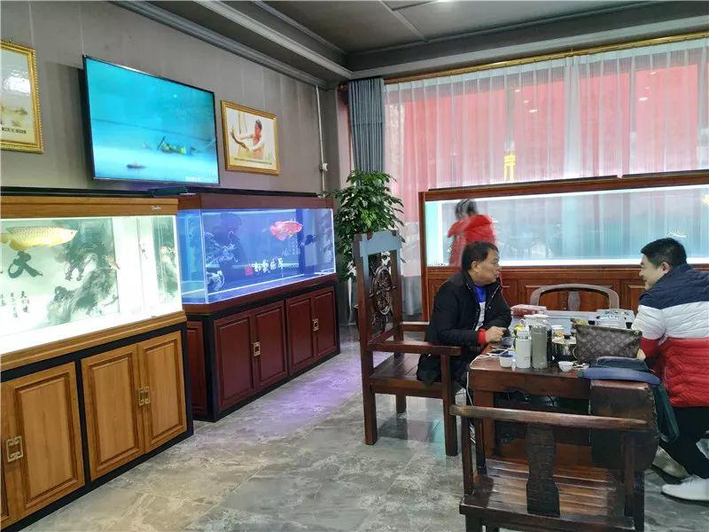 绵阳祥龙水族馆 绵阳祥龙水族馆 绵阳水族批发市场第2张