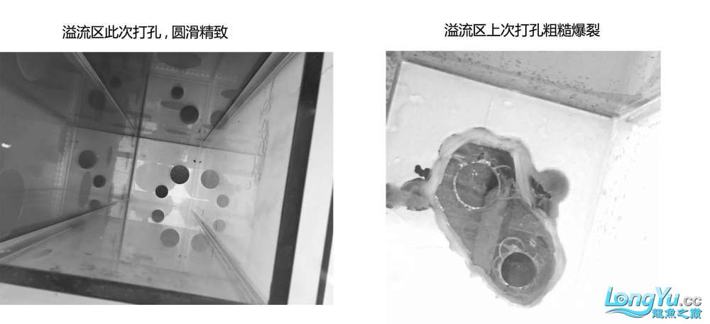 300m90m90m金晶五线全超龙魟缸评测 绵阳龙鱼论坛 绵阳水族批发市场第7张