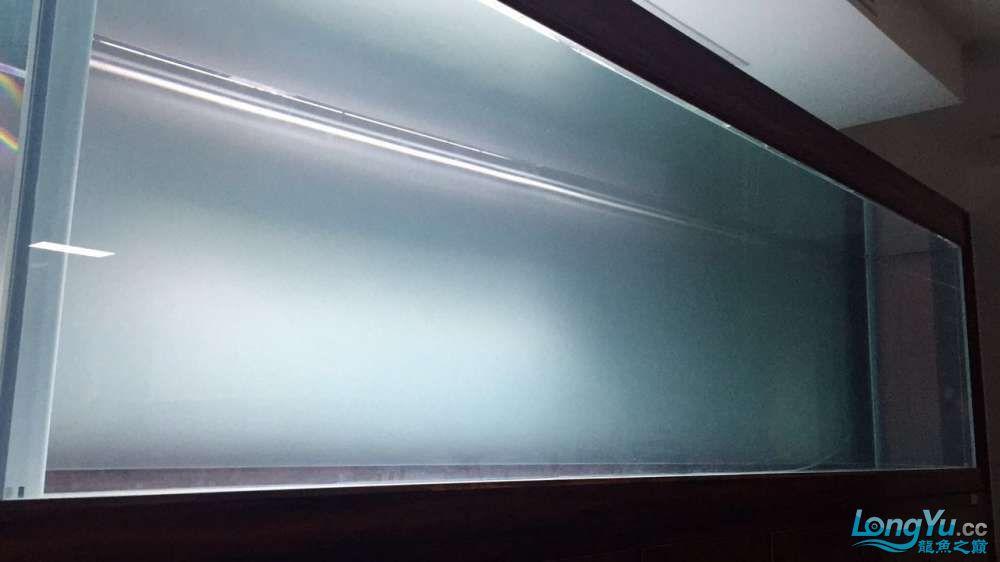 300m90m90m金晶五线全超龙魟缸评测 绵阳龙鱼论坛 绵阳水族批发市场第19张