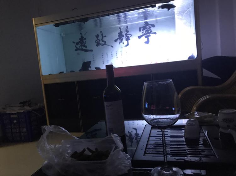 这样观赏鱼缸是最舒服的 绵阳龙鱼论坛
