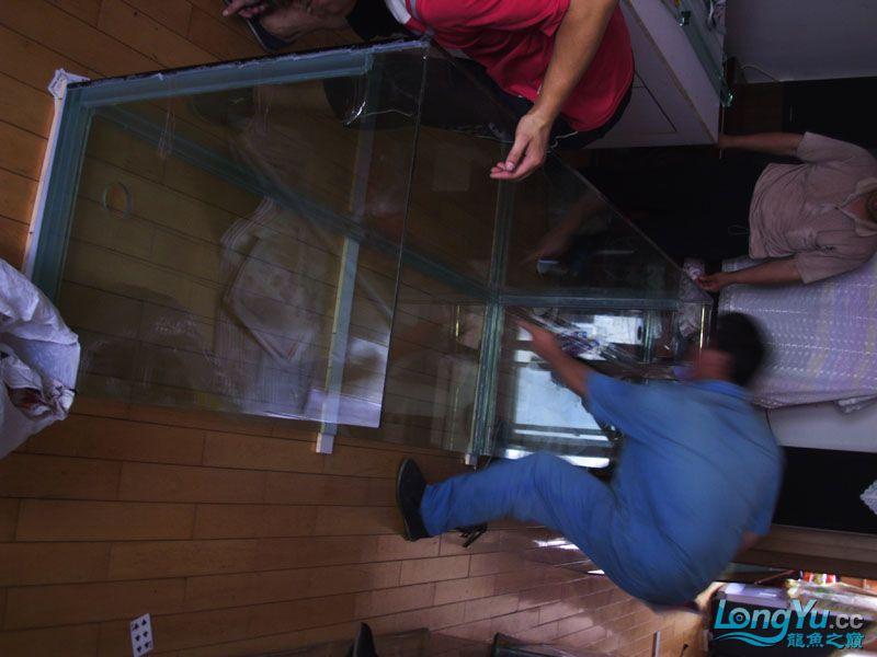 看看我订做的2米的缸~~~~~~ 绵阳龙鱼论坛 绵阳水族批发市场第2张