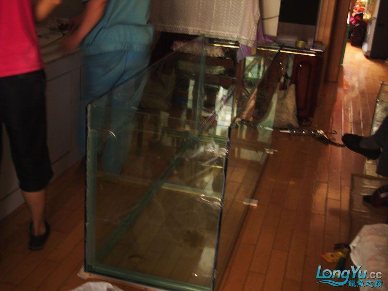 看看我订做的2米的缸~~~~~~ 绵阳龙鱼论坛 绵阳水族批发市场第10张