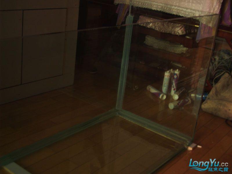 看看我订做的2米的缸~~~~~~ 绵阳龙鱼论坛 绵阳水族批发市场第12张