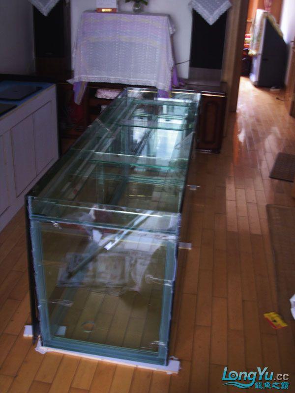 看看我订做的2米的缸~~~~~~ 绵阳龙鱼论坛 绵阳水族批发市场第17张