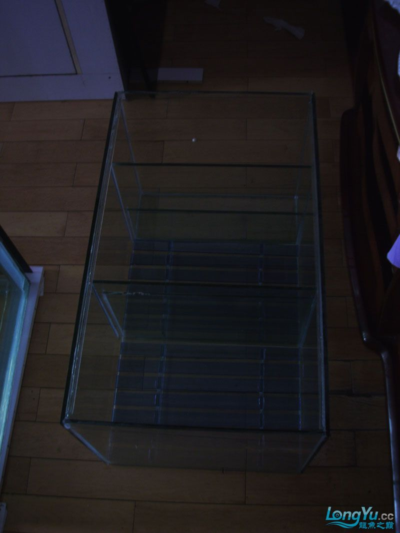 看看我订做的2米的缸~~~~~~ 绵阳龙鱼论坛 绵阳水族批发市场第20张
