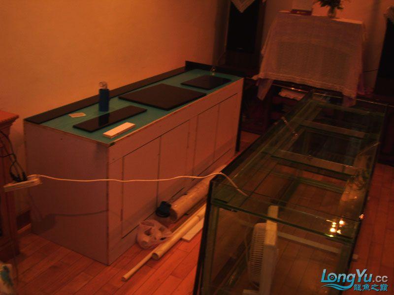 看看我订做的2米的缸~~~~~~ 绵阳龙鱼论坛 绵阳水族批发市场第22张