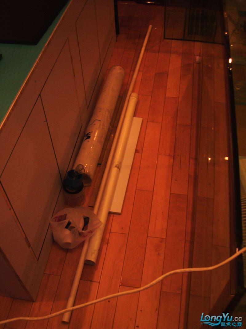 看看我订做的2米的缸~~~~~~ 绵阳龙鱼论坛 绵阳水族批发市场第23张