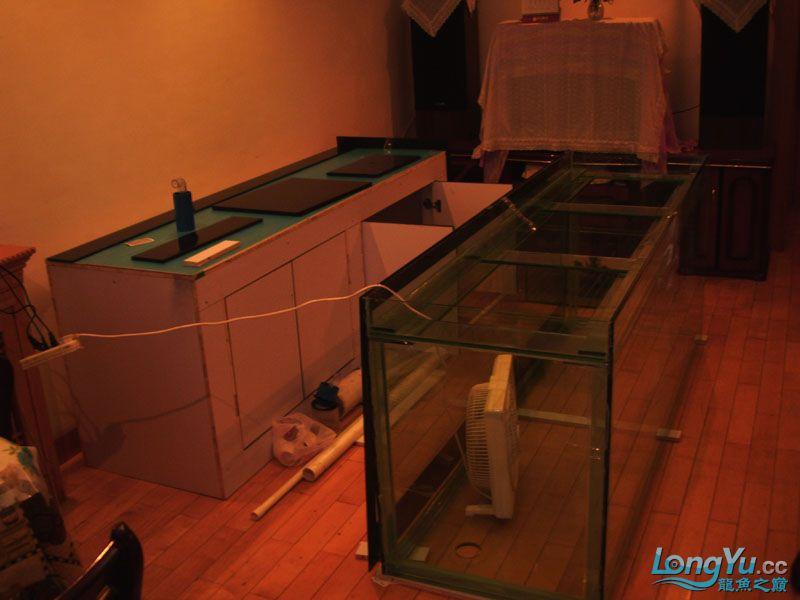 看看我订做的2米的缸~~~~~~ 绵阳龙鱼论坛 绵阳水族批发市场第28张