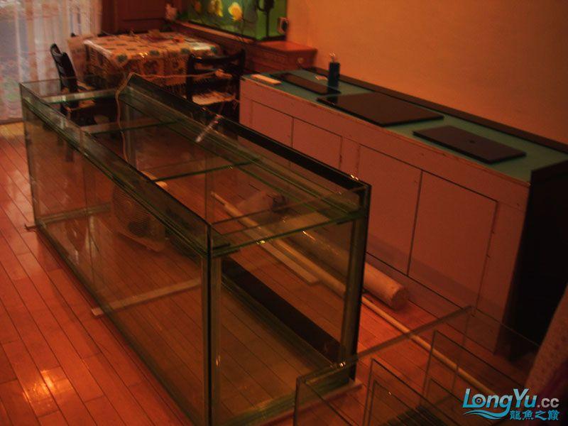 看看我订做的2米的缸~~~~~~ 绵阳龙鱼论坛 绵阳水族批发市场第29张