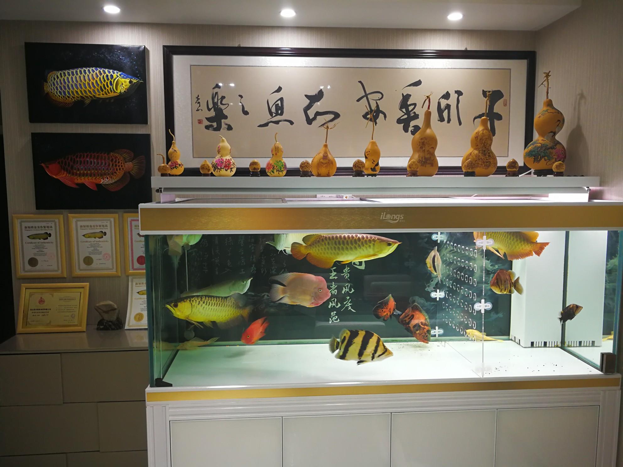 青海西宁鱼圈成立了,欢迎鱼友加入。