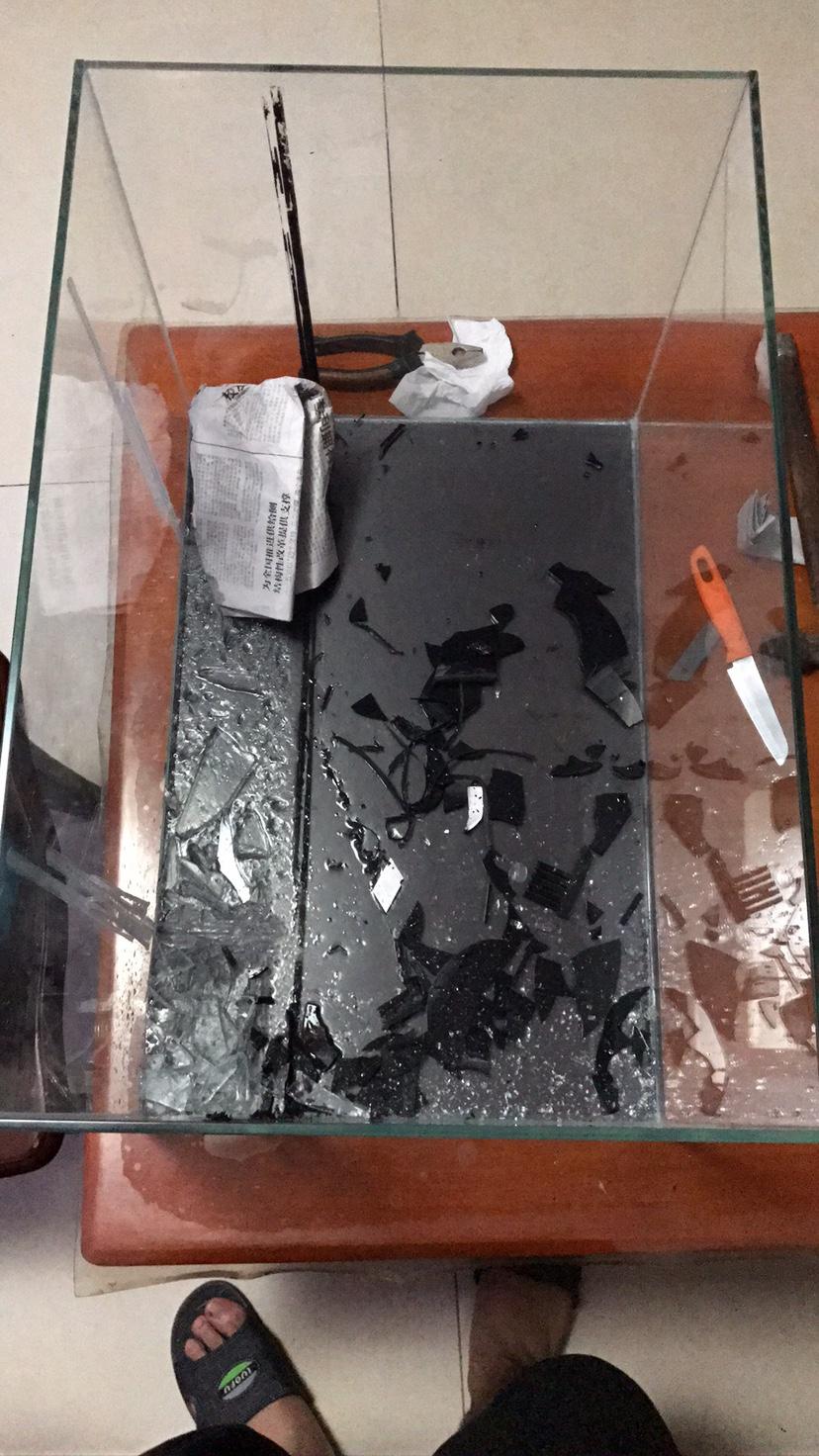 背滤缸改造绵阳水族批发市场 绵阳龙鱼论坛 绵阳水族批发市场第3张