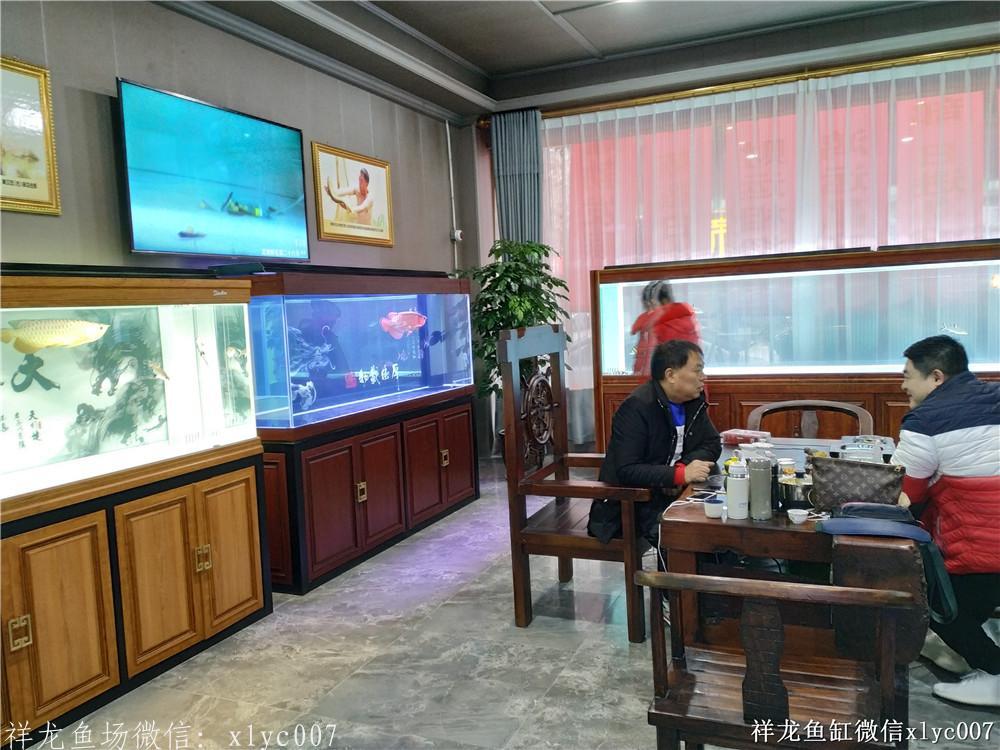 绵阳鱼缸 未命名 绵阳水族批发市场第1张