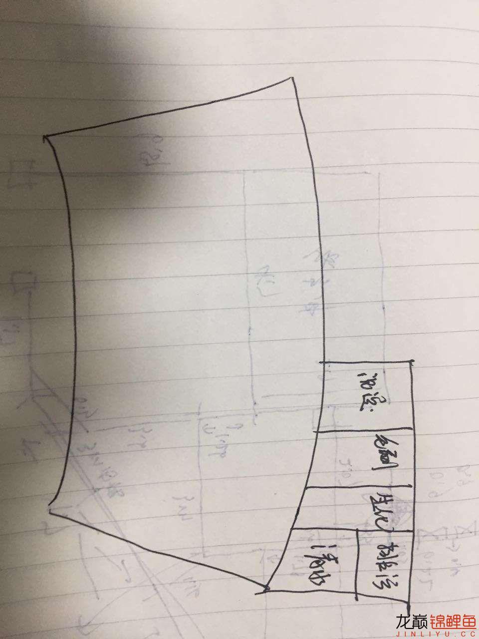 绵阳鱼缸定做定制各位老师帮忙看看 绵阳龙鱼论坛 绵阳水族批发市场第1张