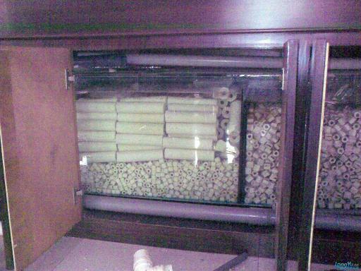 一位发烧友的混养绵阳最大鱼缸,强悍的过滤 绵阳龙鱼论坛 绵阳水族批发市场第9张