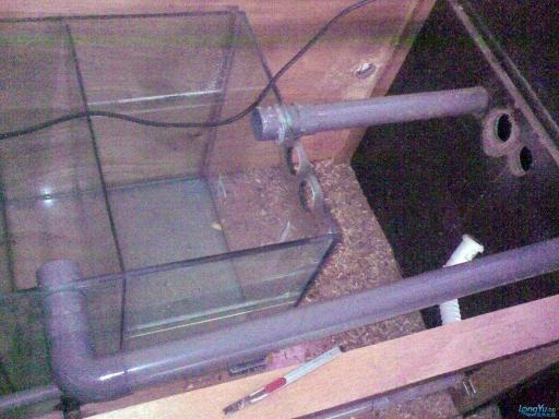 一位发烧友的混养绵阳最大鱼缸,强悍的过滤 绵阳龙鱼论坛 绵阳水族批发市场第12张
