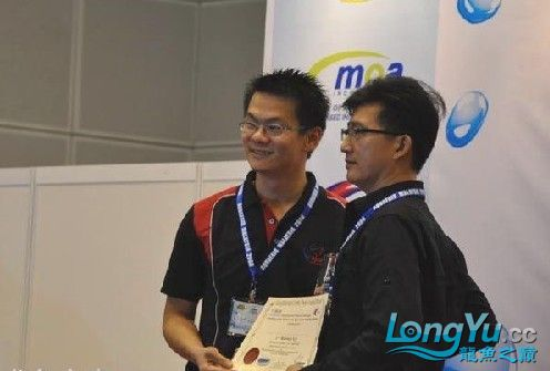马来西亚吉隆坡双子塔颁奖 绵阳龙鱼论坛 绵阳水族批发市场第4张