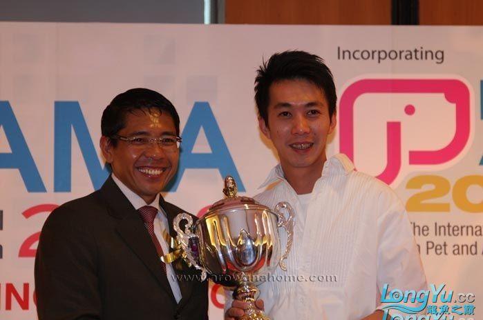 新加坡国际水族展龙鱼比赛冠军 绵阳龙鱼论坛 绵阳水族批发市场第1张