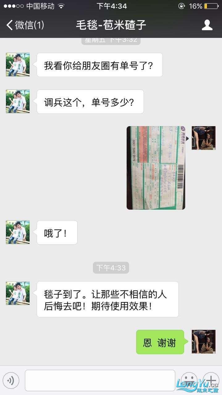 国庆节 还是继续送神毯 绵阳水族批发市场 绵阳水族批发市场第10张