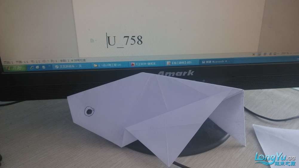 【鱼之巅峰】我的小金鱼 绵阳龙鱼论坛