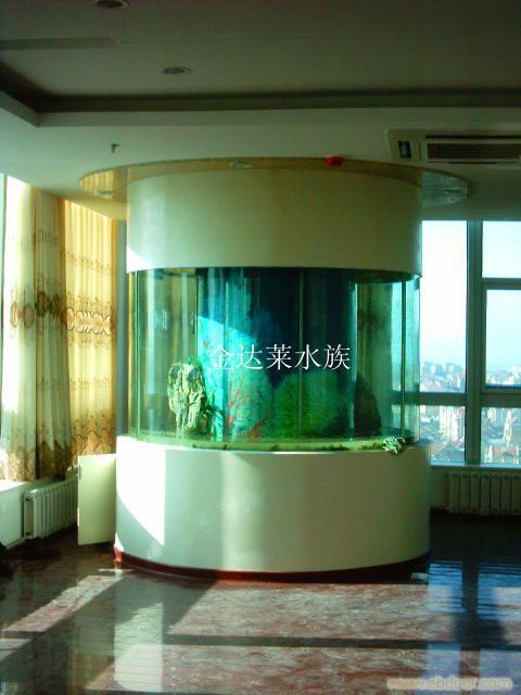 请问龙鱼这是什么病如何处理 绵阳龙鱼论坛 绵阳水族批发市场第2张