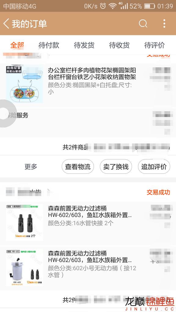 滴流添加前置 绵阳龙鱼论坛 绵阳水族批发市场第2张