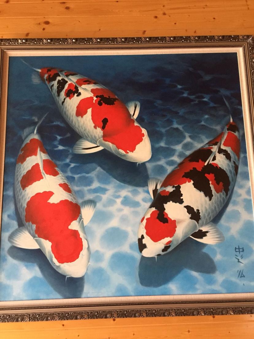 绵阳银龙从现在开始养鱼八字政策告别死鱼 绵阳水族批发市场 绵阳水族批发市场第3张