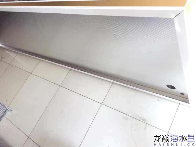 绵阳热带鱼缸里怎么养水草3210880880 绵阳水族批发市场 绵阳水族批发市场第2张