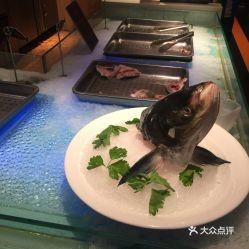 养鱼先养好水 绵阳水族批发市场