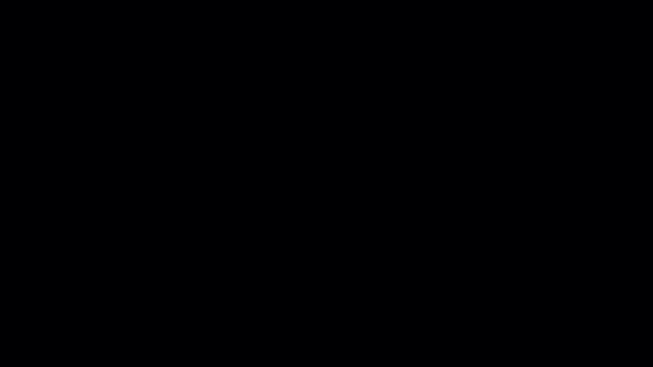 绵阳白子关刀鱼批发市场大鳍尾精品红龙 绵阳水族批发市场 绵阳水族批发市场第1张