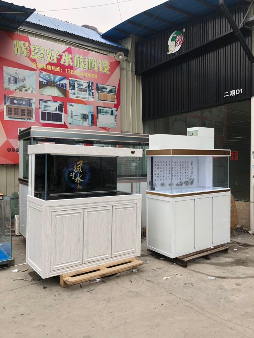 分享:出货的喜悦 绵阳水族批发市场 绵阳水族批发市场第4张