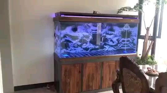 超白龙鱼鱼缸定制批发无溢流款