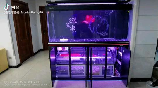 开缸啦~18米森森大型鱼缸HWG 绵阳龙鱼论坛 绵阳水族批发市场第1张